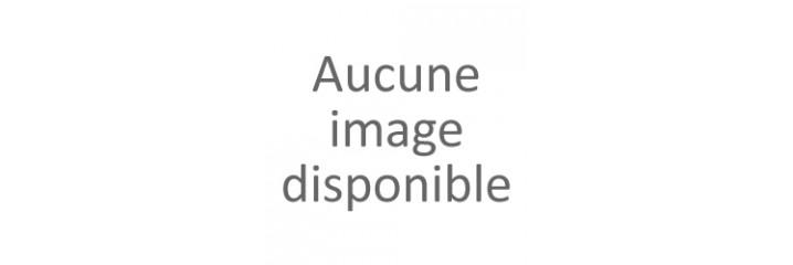 Postes SIP ALCATEL